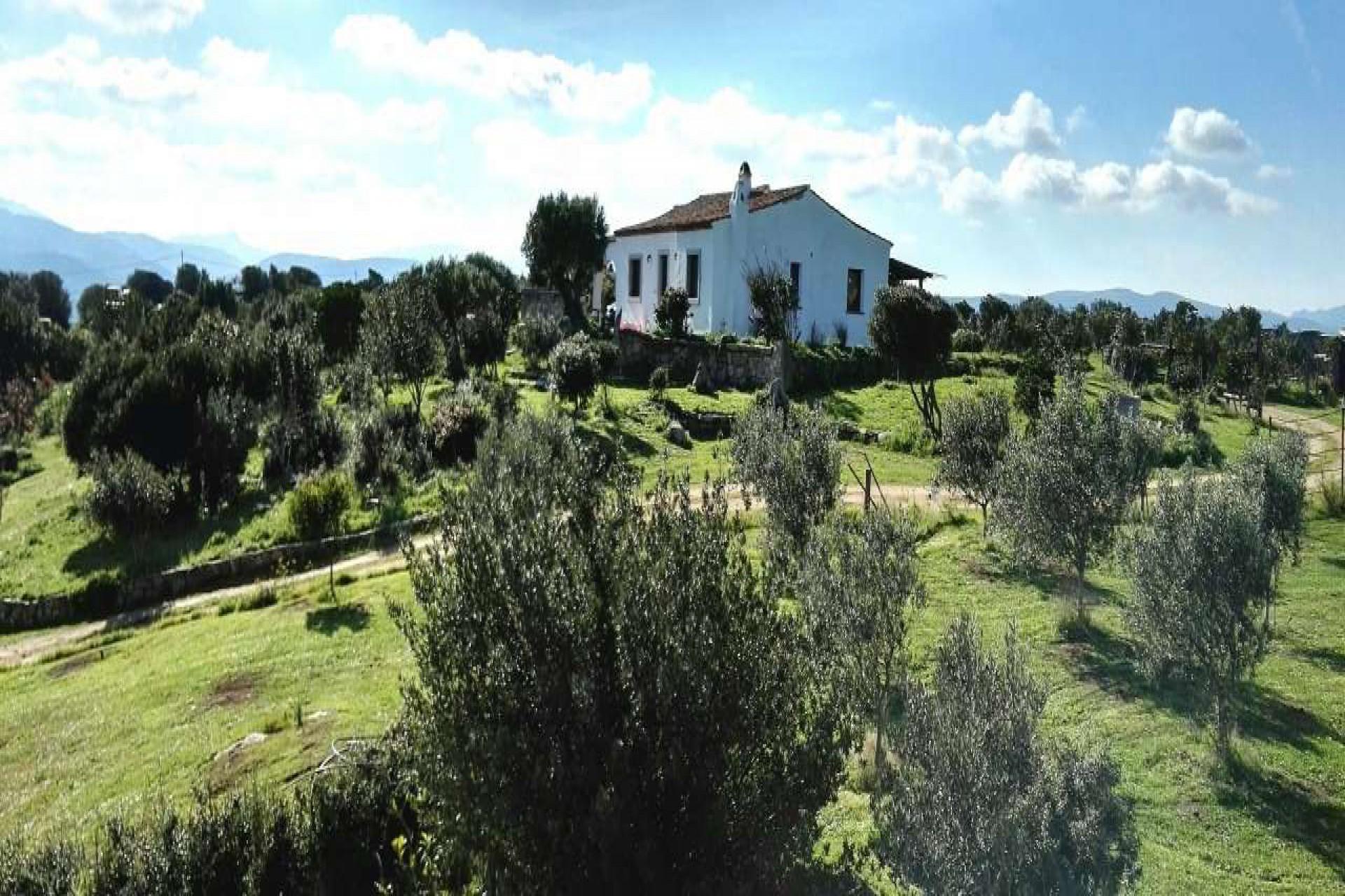 Arzachena independent villa