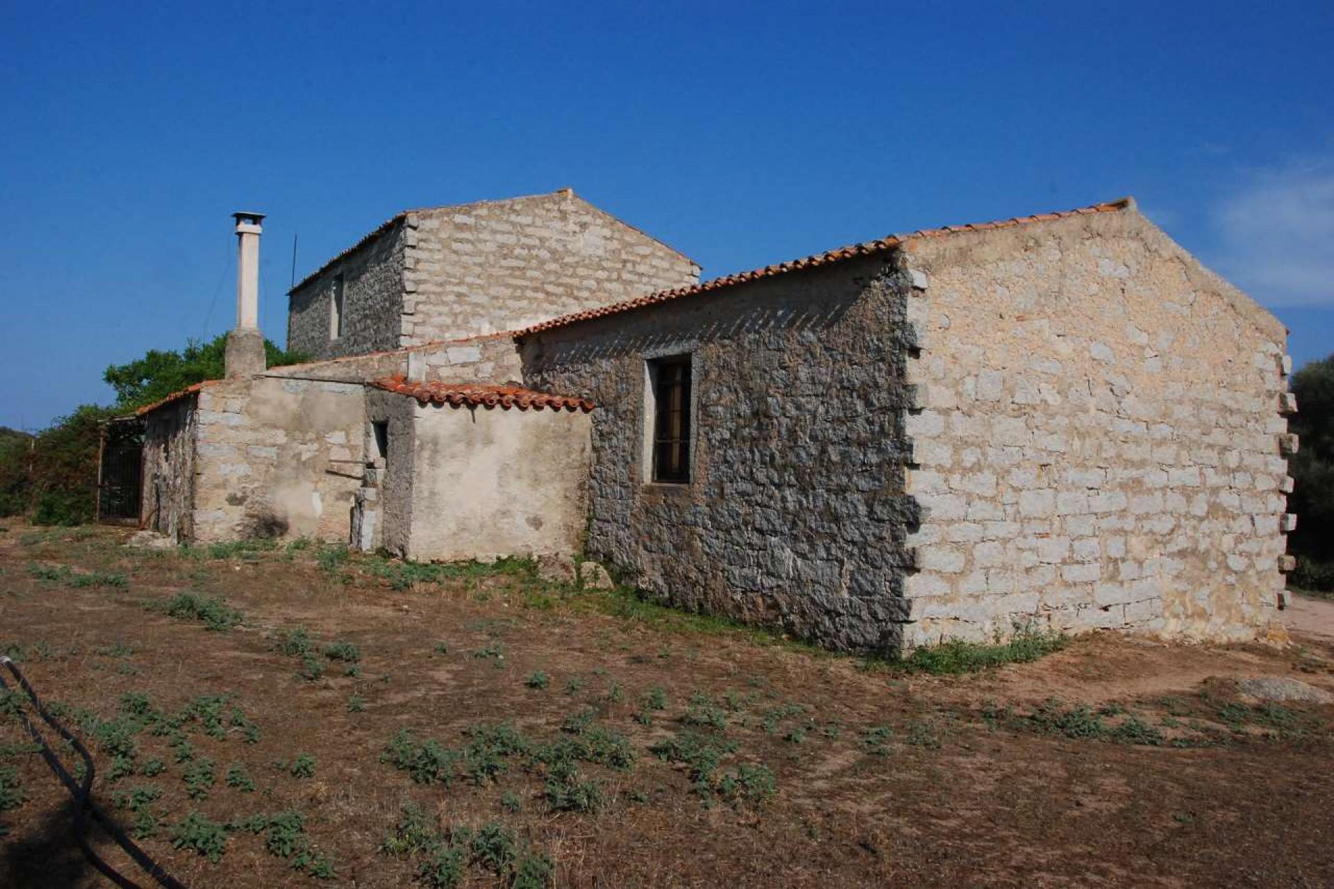 Tempio Pausania locality Bassacutena. Farm for sale