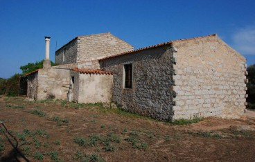 Tempio Pausania locality Bassacutena. Farm for sale