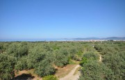 Alghero beautiful villa with sea view._11