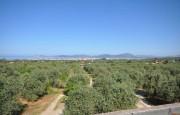 Alghero beautiful villa with sea view._1