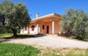 Alghero beautiful villa with sea view._15