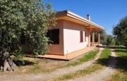 Alghero beautiful villa with sea view._16