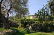 Olbia S. Pantaleo, villa with outbuilding for sale_36