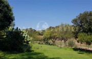 Olbia S. Pantaleo, villa with outbuilding for sale_38