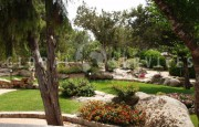 Baia Sardinia villa with swimming pool for sale_49