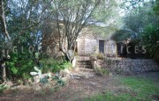 San Pantaleo antico stazzo vendita_33