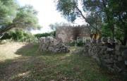 San Pantaleo antico stazzo vendita_36