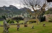 San Pantaleo, ancient farmhouse for sale_4