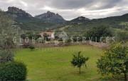 San Pantaleo, ancient farmhouse for sale_17