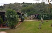 San Pantaleo, ancient farmhouse for sale_22