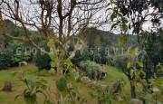 San Pantaleo, ancient farmhouse for sale_23