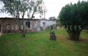 San Pantaleo, ancient farmhouse for sale_31