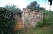 San Pantaleo, ancient farmhouse for sale_35