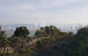 Palau ancient stazzo with farm for sale_9