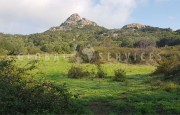 Palau ancient stazzo with farm for sale_15
