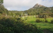 Palau ancient stazzo with farm for sale_16