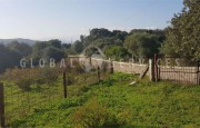 Palau ancient stazzo with farm for sale_20