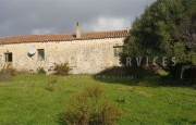 Palau ancient stazzo with farm for sale_21