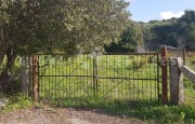 Palau ancient stazzo with farm for sale_22