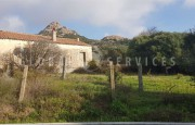 Palau ancient stazzo with farm for sale_23