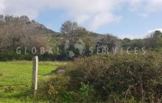 Palau ancient stazzo with farm for sale_28