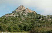 Palau ancient stazzo with farm for sale_3