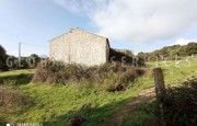 Palau ancient stazzo with farm for sale_34