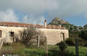 Palau ancient stazzo with farm for sale_38