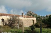 Palau ancient stazzo with farm for sale_39