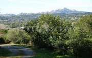 Arzachena Monticanaglia villa for sale_30