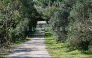 Arzachena Monticanaglia villa for sale_34