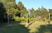 Cannigione villa for sale_8