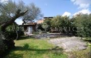 Cannigione villa for sale_11