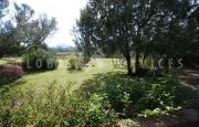 Cannigione villa for sale_15