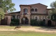 Cannigione villa for sale_45