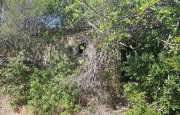 Arzachena Cannigione complesso ricettivo ad indirizzo turistico_8