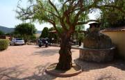 Alghero  villas and swimming pool_25