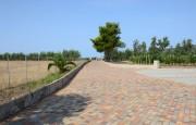 Alghero  villas and swimming pool_30