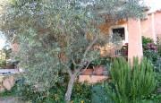 San Pantaleo Costa Smeralda villa for sale_21