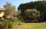 San Pantaleo Costa Smeralda villa for sale_41