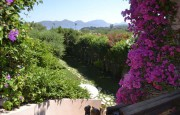 Porto Rotondo Punta Lada Luxury villa for sale_9