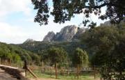 Olbia san Pantaleo villa for sale_25