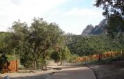 Olbia san Pantaleo villa for sale_28