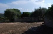 pio Pausania locality Bassacutena. Farm for sale_12
