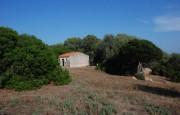 pio Pausania locality Bassacutena. Farm for sale_4