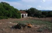 pio Pausania locality Bassacutena. Farm for sale_15