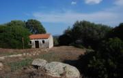 pio Pausania locality Bassacutena. Farm for sale_20