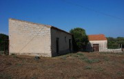 pio Pausania locality Bassacutena. Farm for sale_6