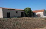 pio Pausania locality Bassacutena. Farm for sale_7